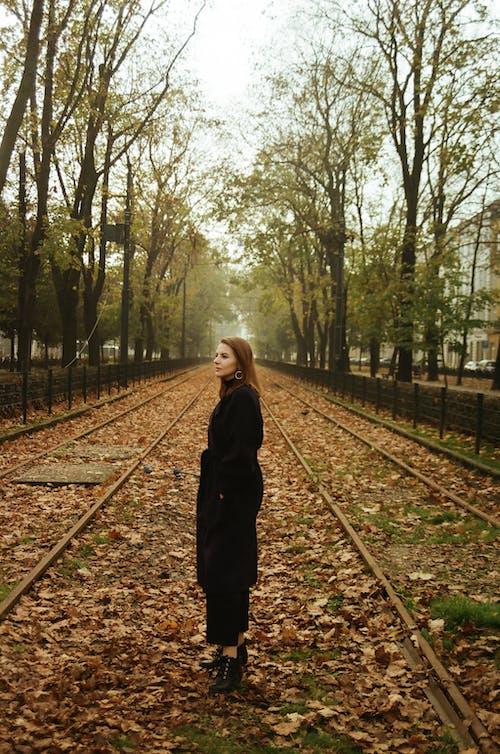 クラクフ, 側面図, 女性, 孤独の無料の写真素材