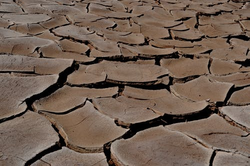 Free stock photo of drought, dry earth, travel photography