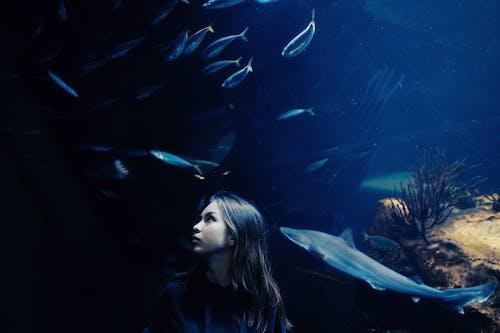 Young ethnic woman in oceanarium