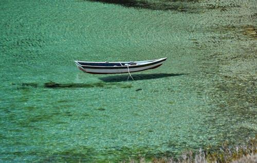Free stock photo of crystal, rowboat, transparent