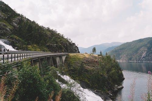 Gratis arkivbilde med årstid, ås, bakke, bro
