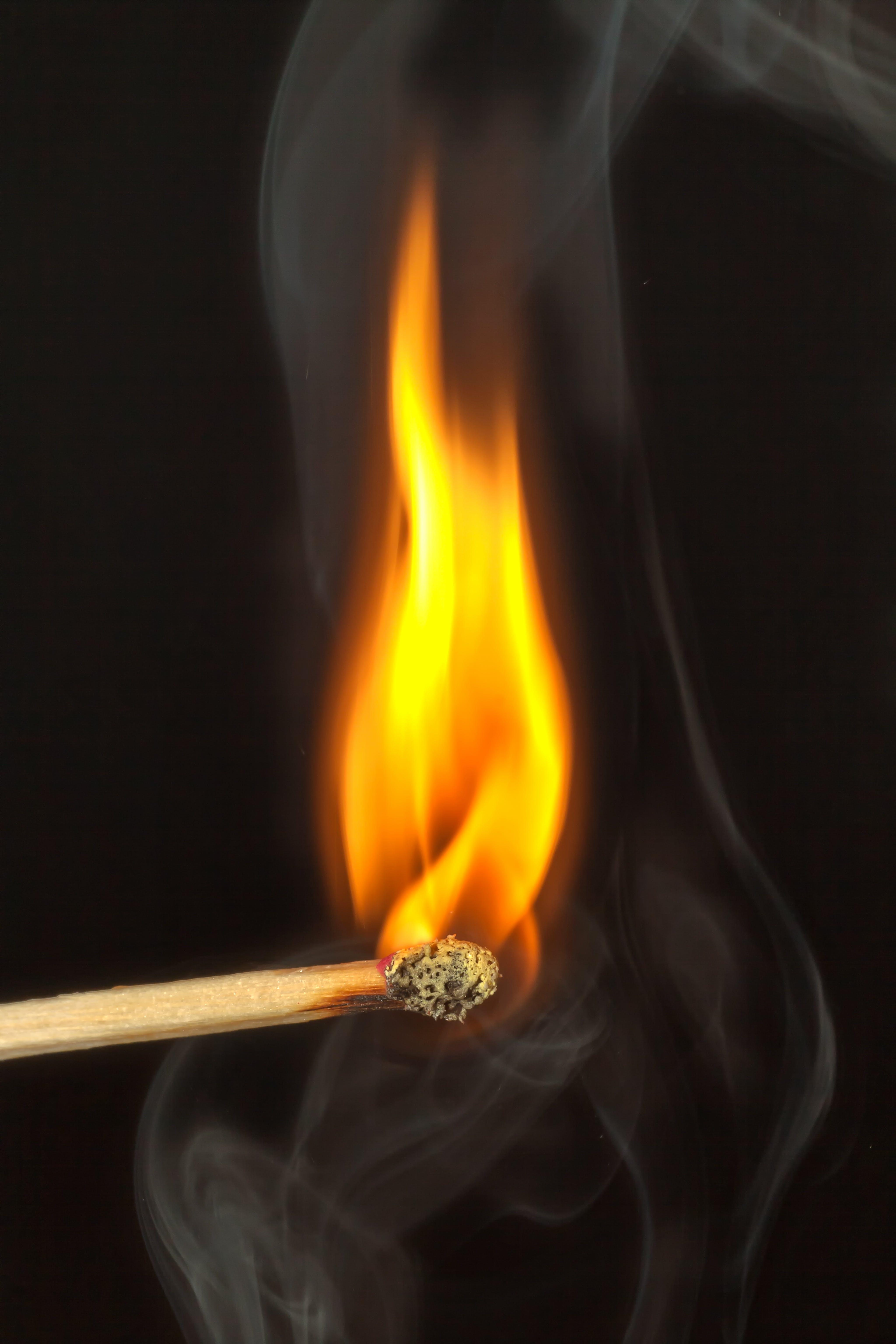 Kostenloses Stock Foto zu feuer, flamme, hitze, nahansicht