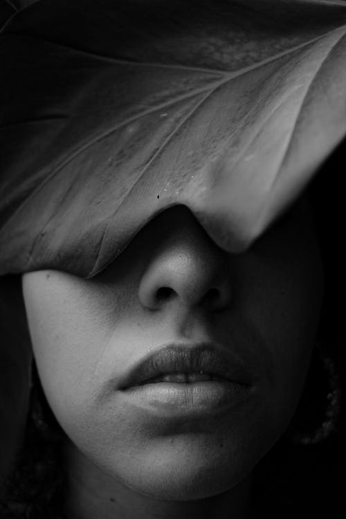 Grayscale Photo Of Woman's Face Covered With A Leaf