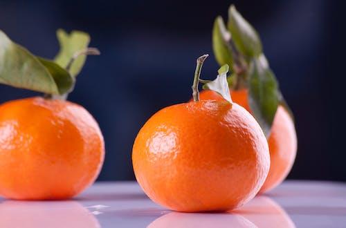 Gratis lagerfoto af appelsiner, Citrus, frisk, frugt