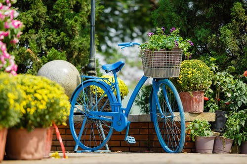 Blue Bike With Flowers In A Basket