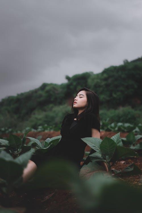 Woman In A Black Dress Near Green Plants