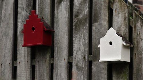 Imagine de stoc gratuită din birdhouses
