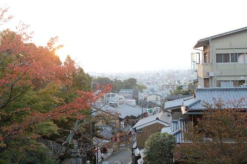 Foto stok gratis budaya Jepang, Jepang, kota Tua, Kyoto