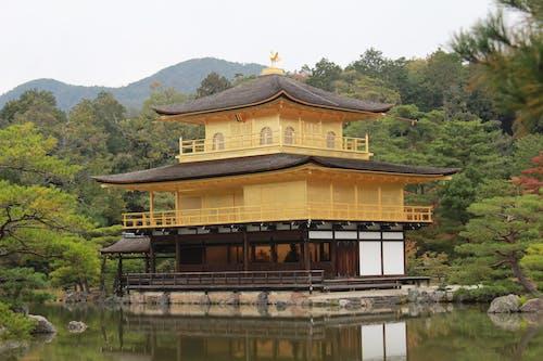 Foto stok gratis budaya Jepang, fotografi alam, Jepang, keemasan