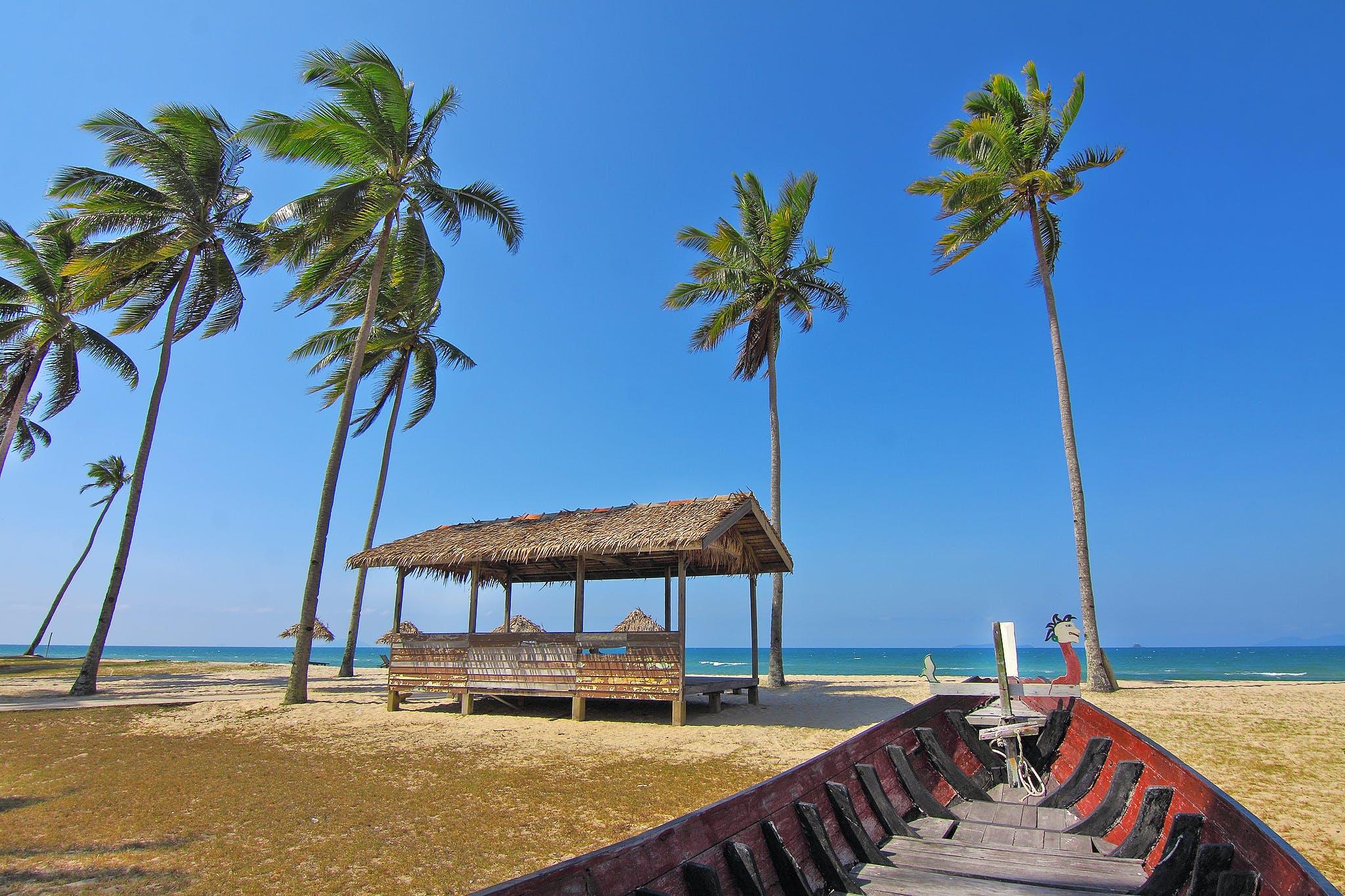 Red Boat Facing Palm Trees Near the Seashore