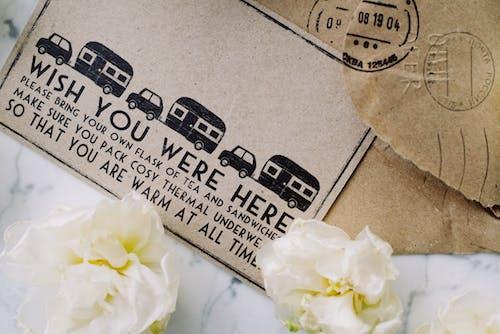 Gratis stockfoto met bloemblaadjes, bloemen, creditcard