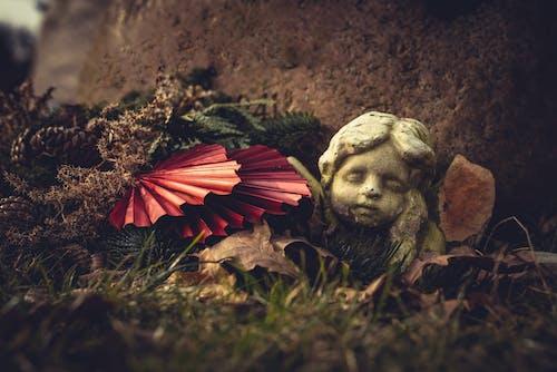 Free stock photo of angel, cemetery