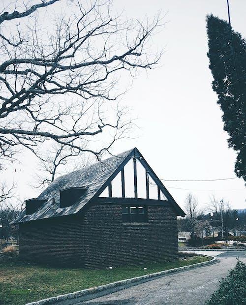 Бесплатное стоковое фото с архитектура, асфальт, бунгало, дерево