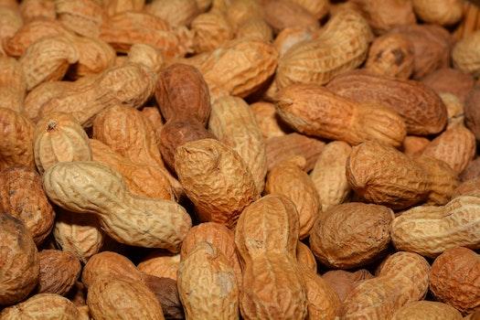 Kostenloses Stock Foto zu essen, braun, nahansicht, erdnüsse