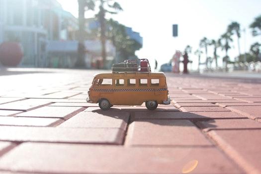 Free stock photo of beach, street, trees, car