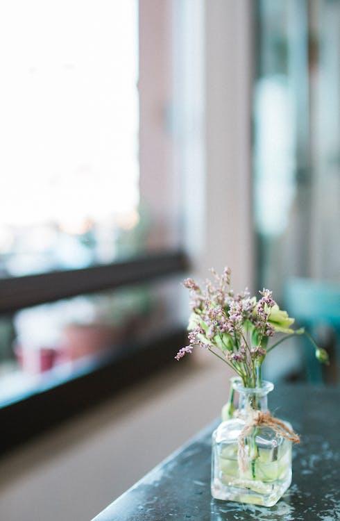 bloem, bloemen, bloemenvaas