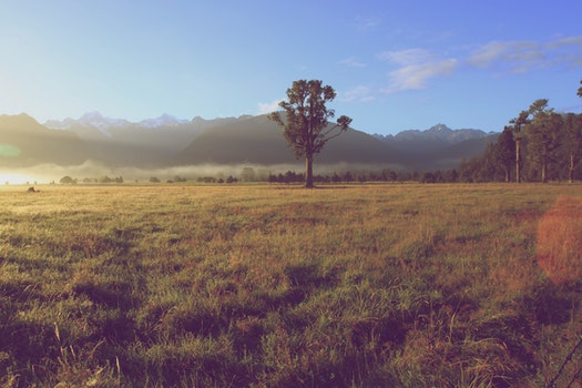 Free stock photo of landscape, nature, sky, sun