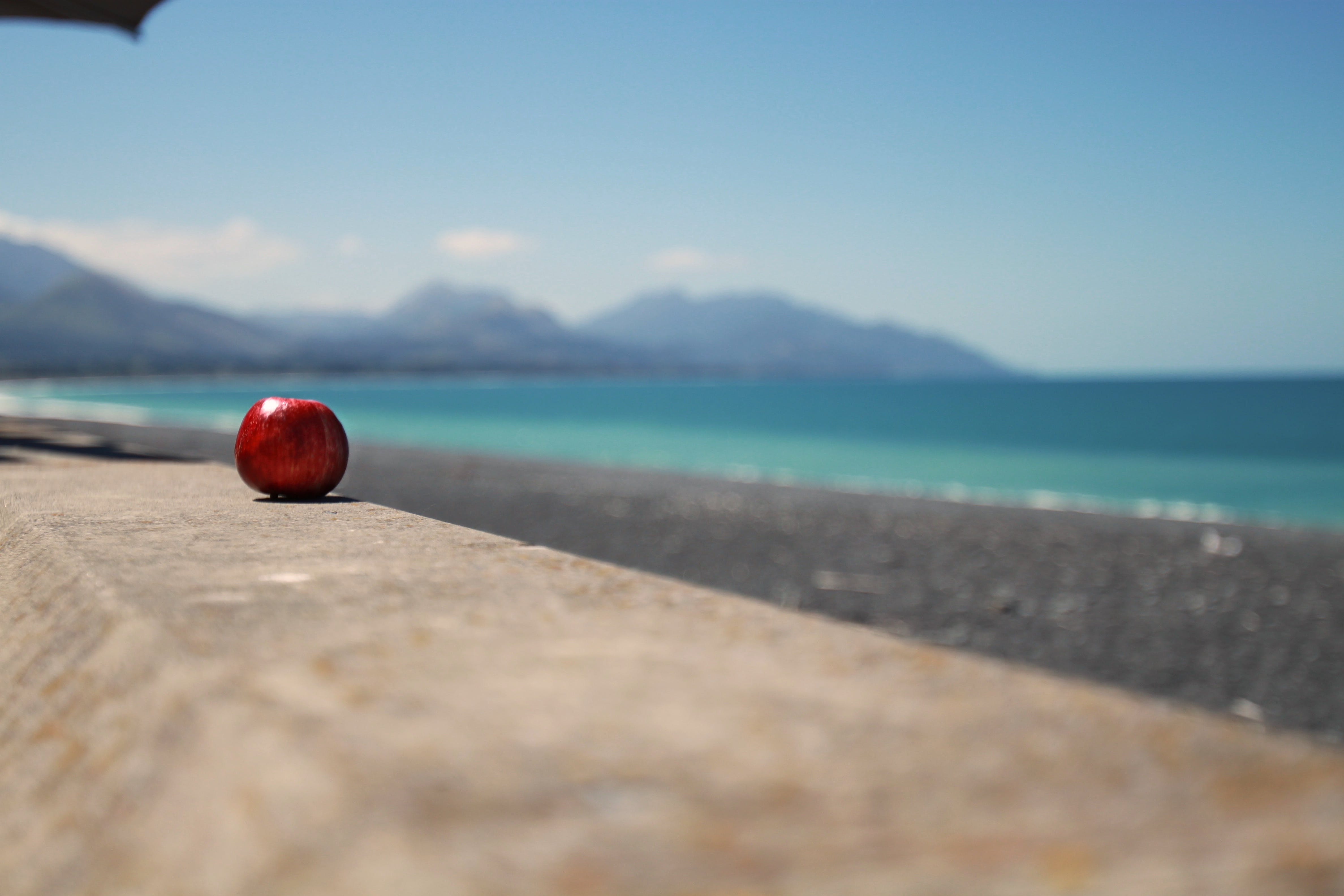 Free stock photo of apple, beach, blue, colorful