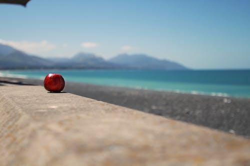 Darmowe zdjęcie z galerii z apple, czerwony, kolorowy, morze