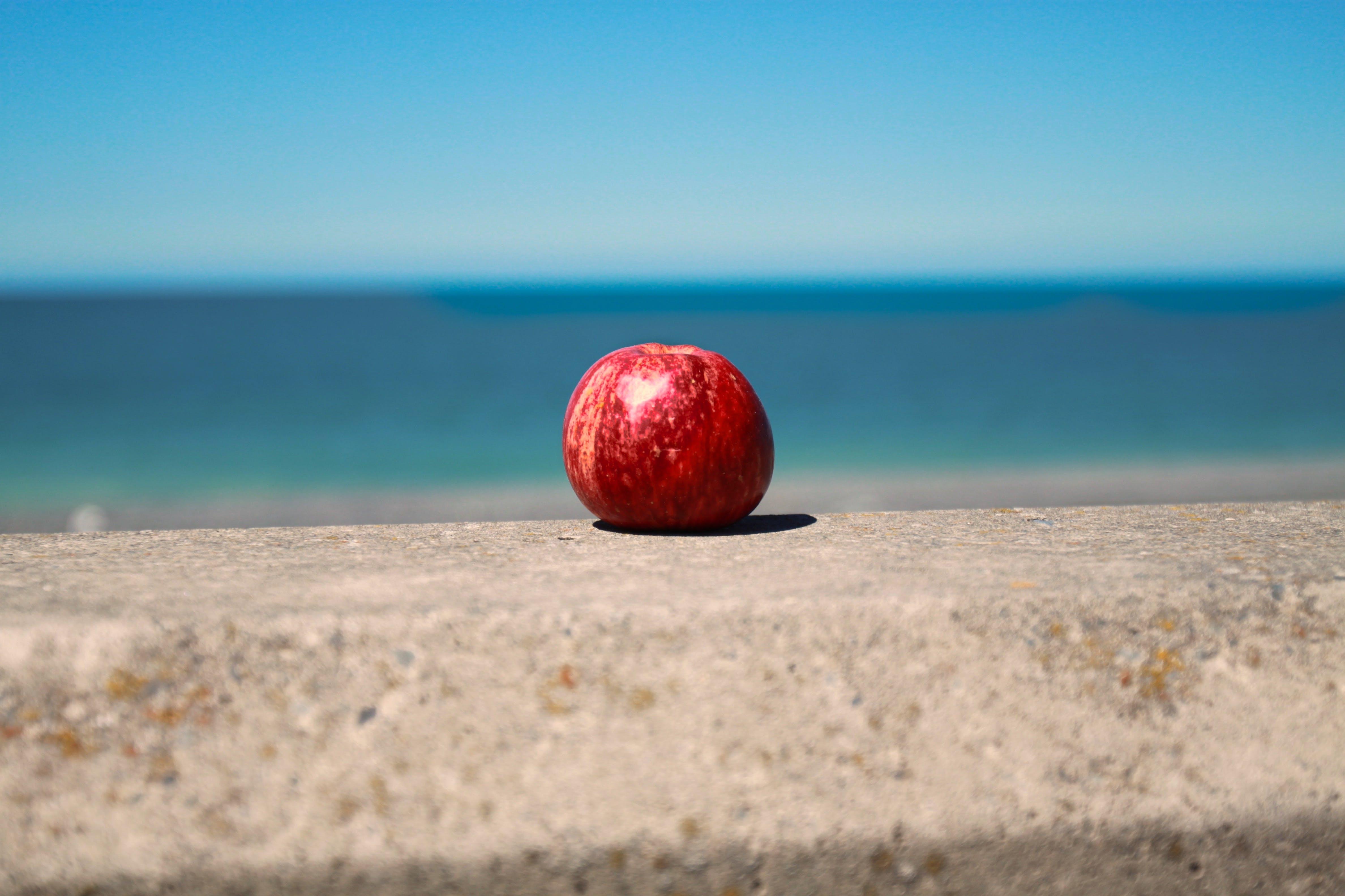 Free stock photo of sea, sky, beach, red