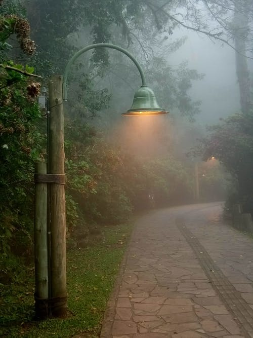 Empty street with lamp in foggy park