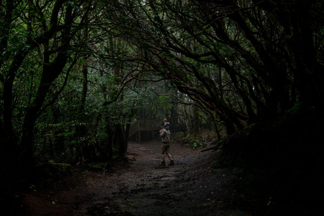 Unrecognizable man with kid on shoulders in dark forest