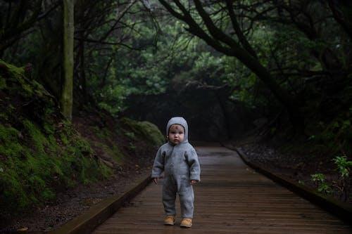 Foto profissional grátis de andar, ao ar livre, apavorado, árvore
