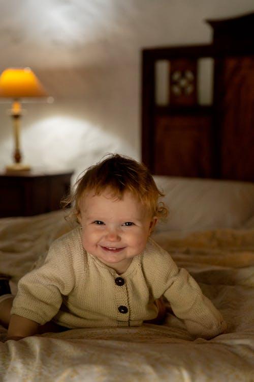 Imagine de stoc gratuită din abraziv, acasă, adorabil, alb