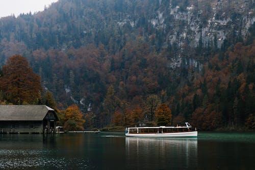 Δωρεάν στοκ φωτογραφιών με βάρκα, γαλήνιος, γραφικός, δέντρα