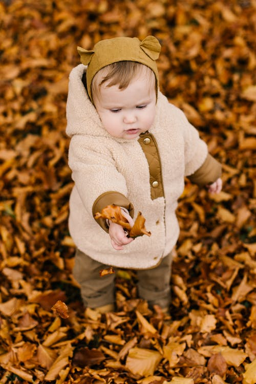 Photo Of Child Holding Dried Leaves