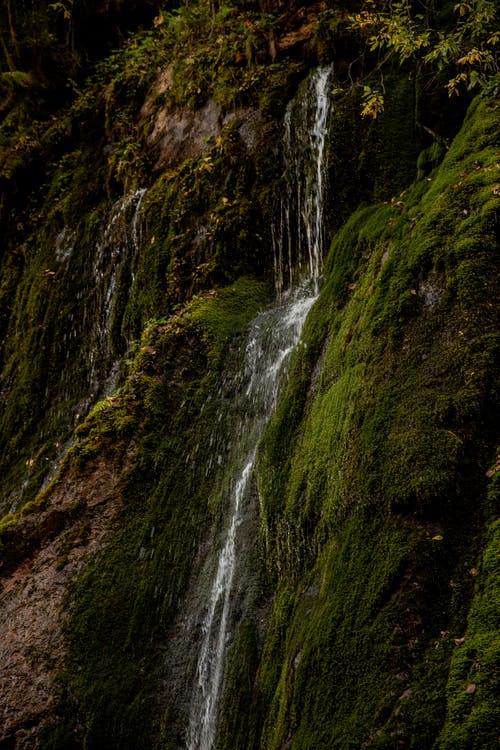 Waterfall flowing down on green slope of mountain in forest