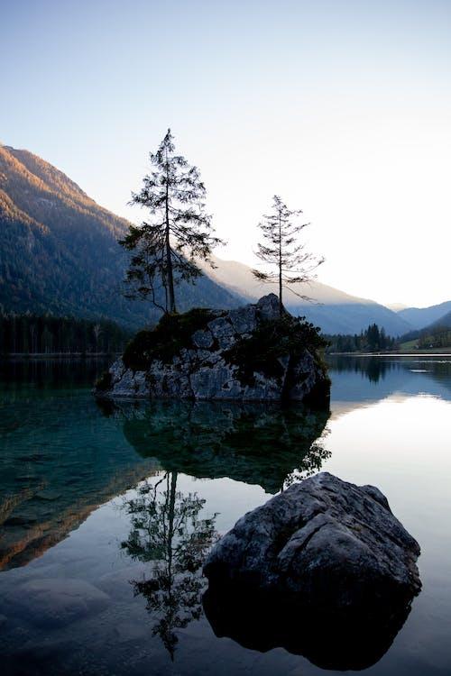 Foto d'estoc gratuïta de Aigües tranquil·les, arbres, cel, cel blau