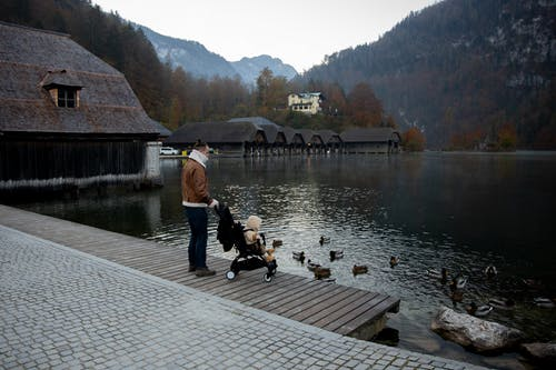 Father and little kid in stroller in casual warm outerwear standing on wooden pier  near lake and looking at ducks swimming in calm water