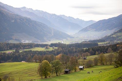 Green Grass Field Near Green Mountains