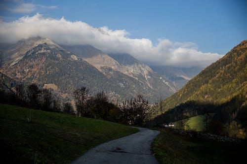 Green Trees Near Mountain Under Blue Sky