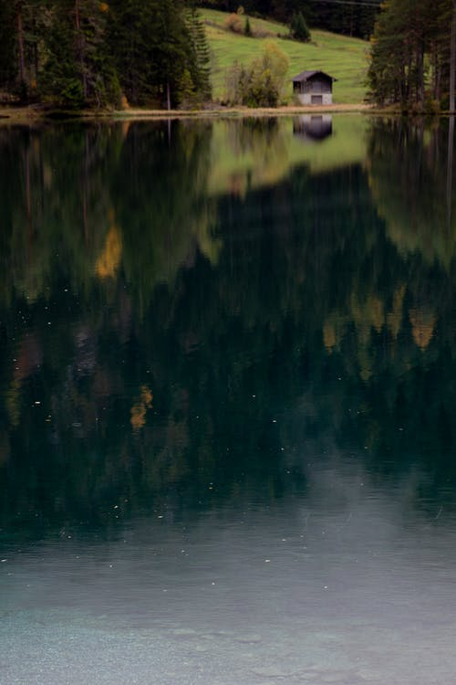 Tranquil lake reflecting house and forest