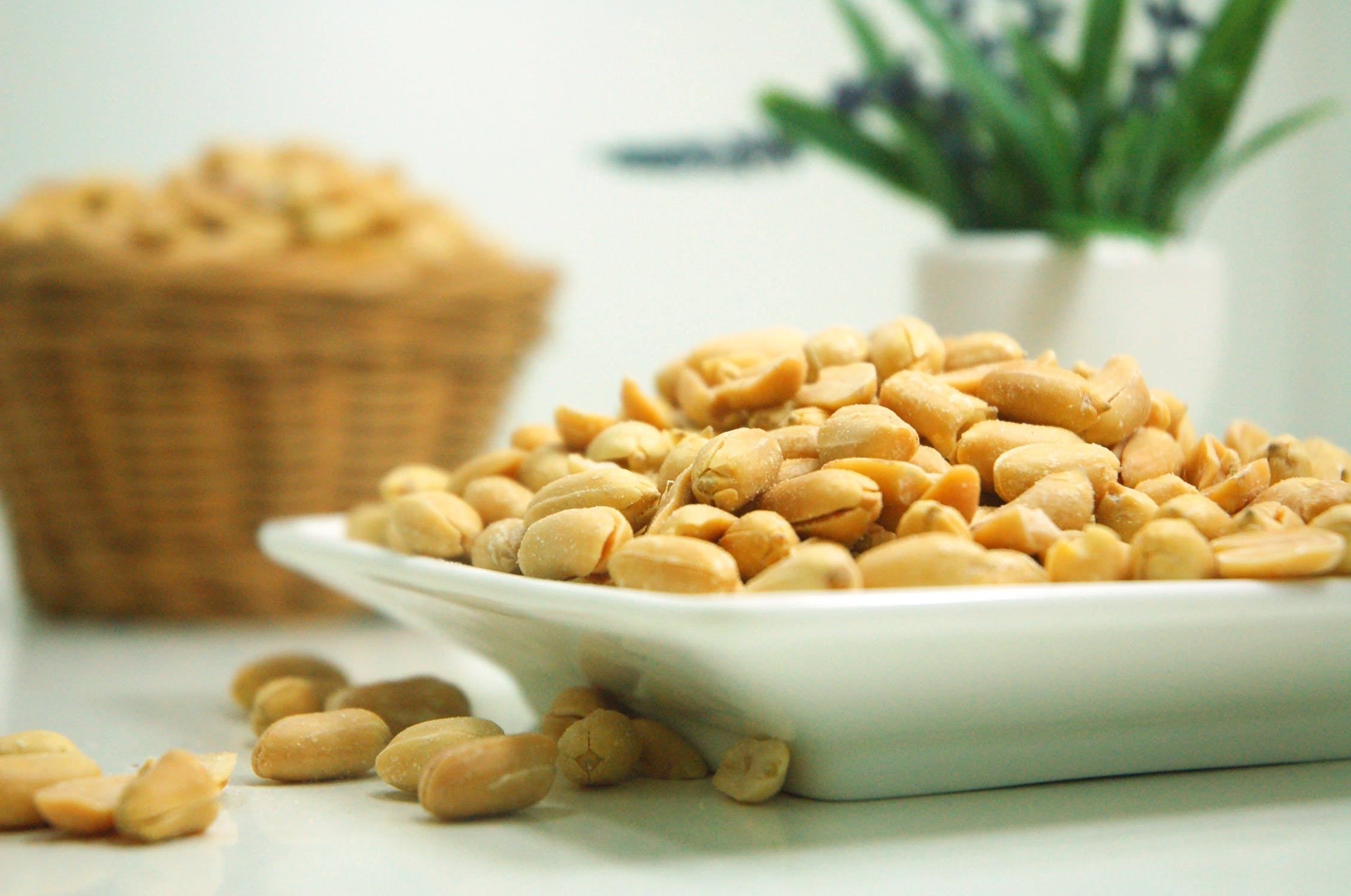 Selective Focus Photograph of Plate of Peanuts