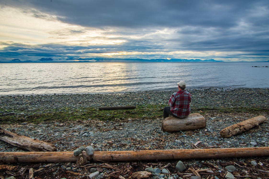 Person in Red and Black Plaid Dress Shirt Sitting on Brown Log Near Body of Water