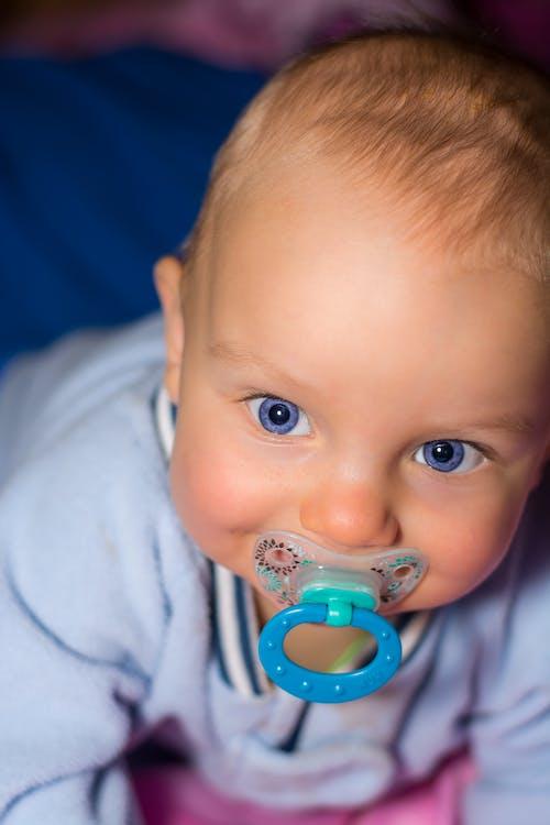 Fotobanka sbezplatnými fotkami na tému bábätko, cumlík, dieťa, mladý