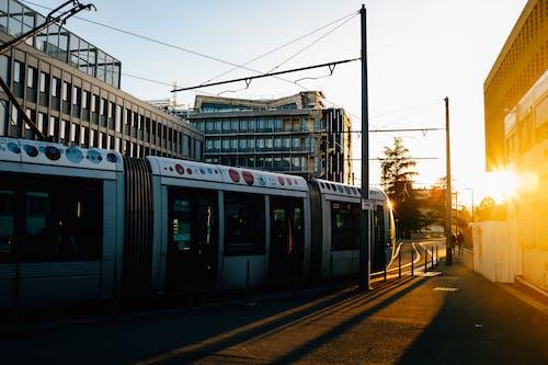 アスファルト, エリア, シティ, タウンの無料の写真素材