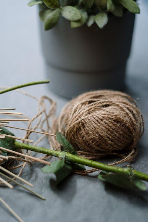 Immagine gratuita di casa, corda, cotone