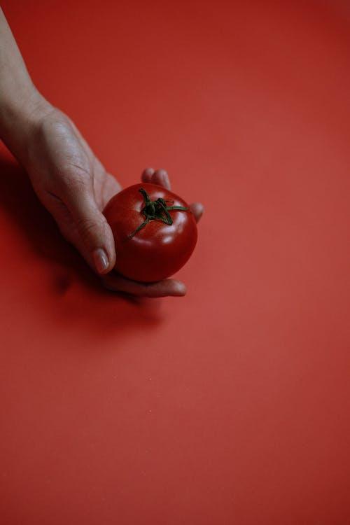 Ilmainen kuvapankkikuva tunnisteilla flat lay, hedelmä, hedelmät, käsi