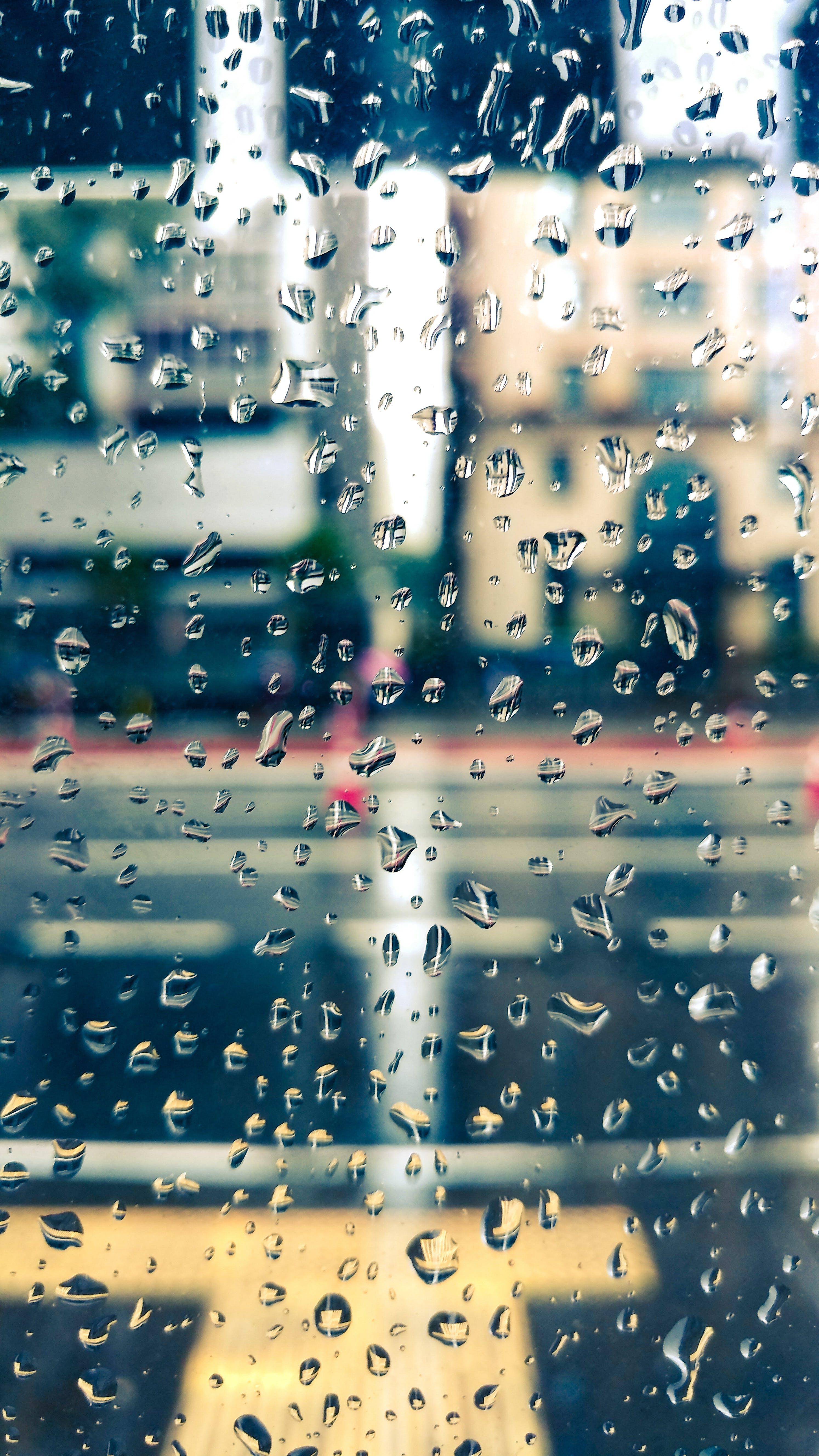 Free stock photo of water, rain, drop of water, drop