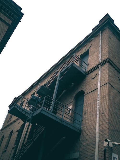 大學, 學校, 建造, 往上爬 的 免费素材照片