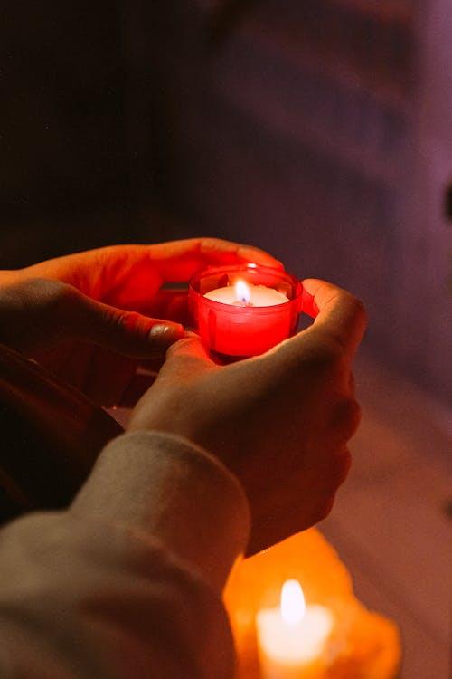 Fotos de stock gratuitas de adorar, alabanza, catedral