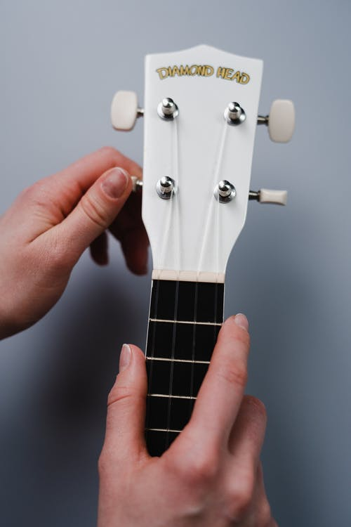 Person Holding Guitar Pick in Close Up Photography