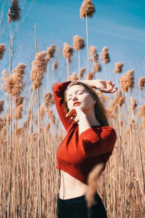 Základová fotografie zdarma na téma bezstarostný, červená špička, denní světlo, focení