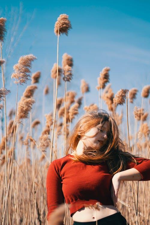 açık hava, alan, boş zaman, büyüme içeren Ücretsiz stok fotoğraf