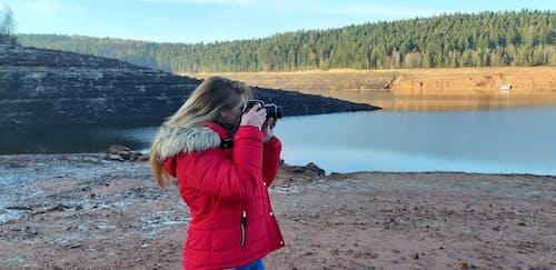Ingyenes stockfotó árnyék, erdő, fényképész, gyönyörű táj témában