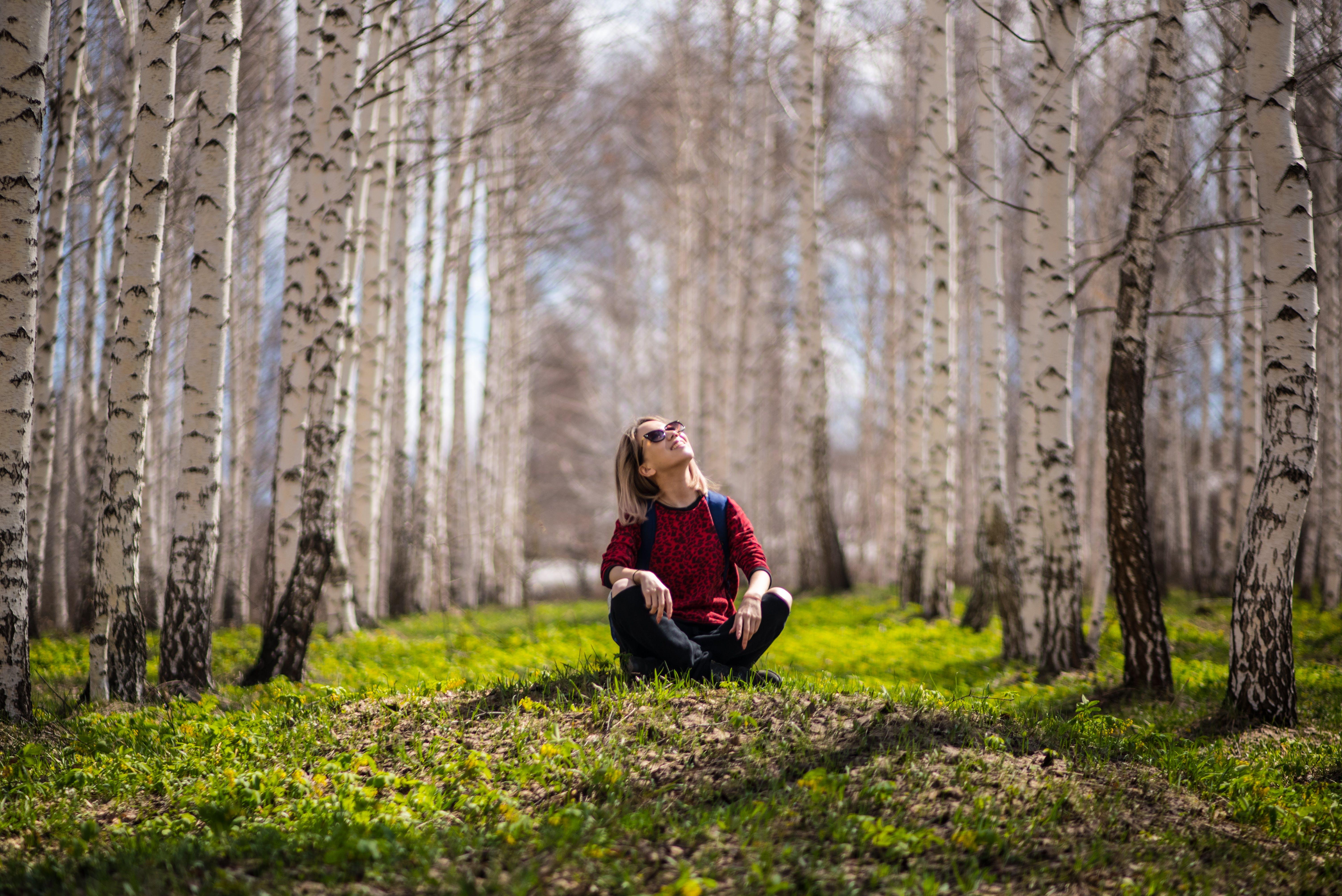 Woman Sitting Between Brown Trees